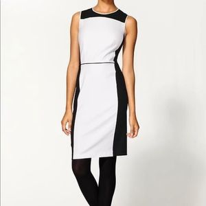 Theory Black And White Dress size 10